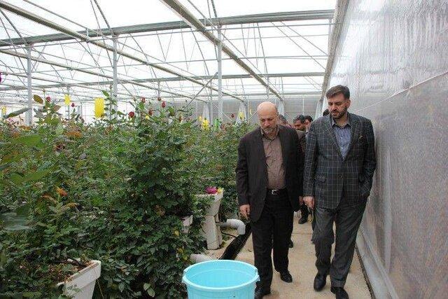 مسئله ای در حوزه کالاهای اساسی استان تهران وجود ندارد